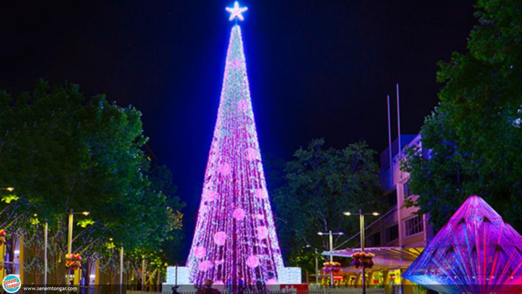 Chritmas-tree-lights-main_guiness_world_record