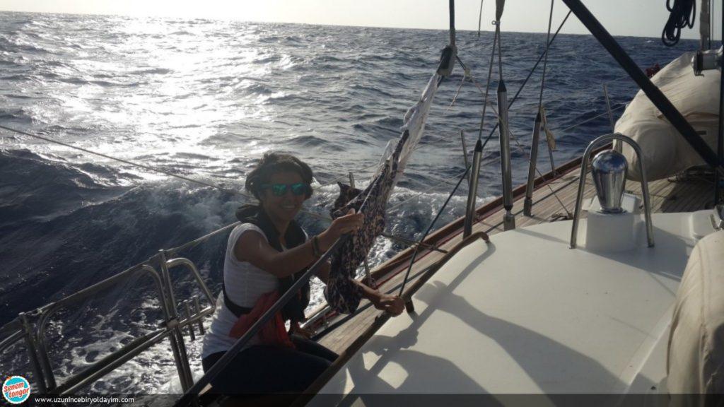 teknede yasam