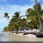 La Isla Saona